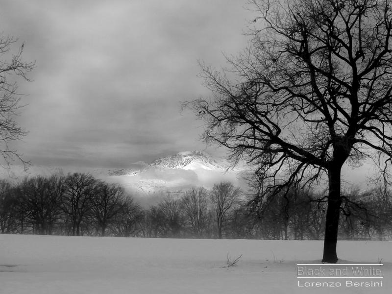 Paesaggio invernale prealpi biellesi wines in art for Disegni bianco e nero paesaggi